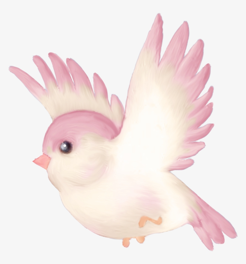 Florju Elmt Png Pinterest Bird Clip Art.