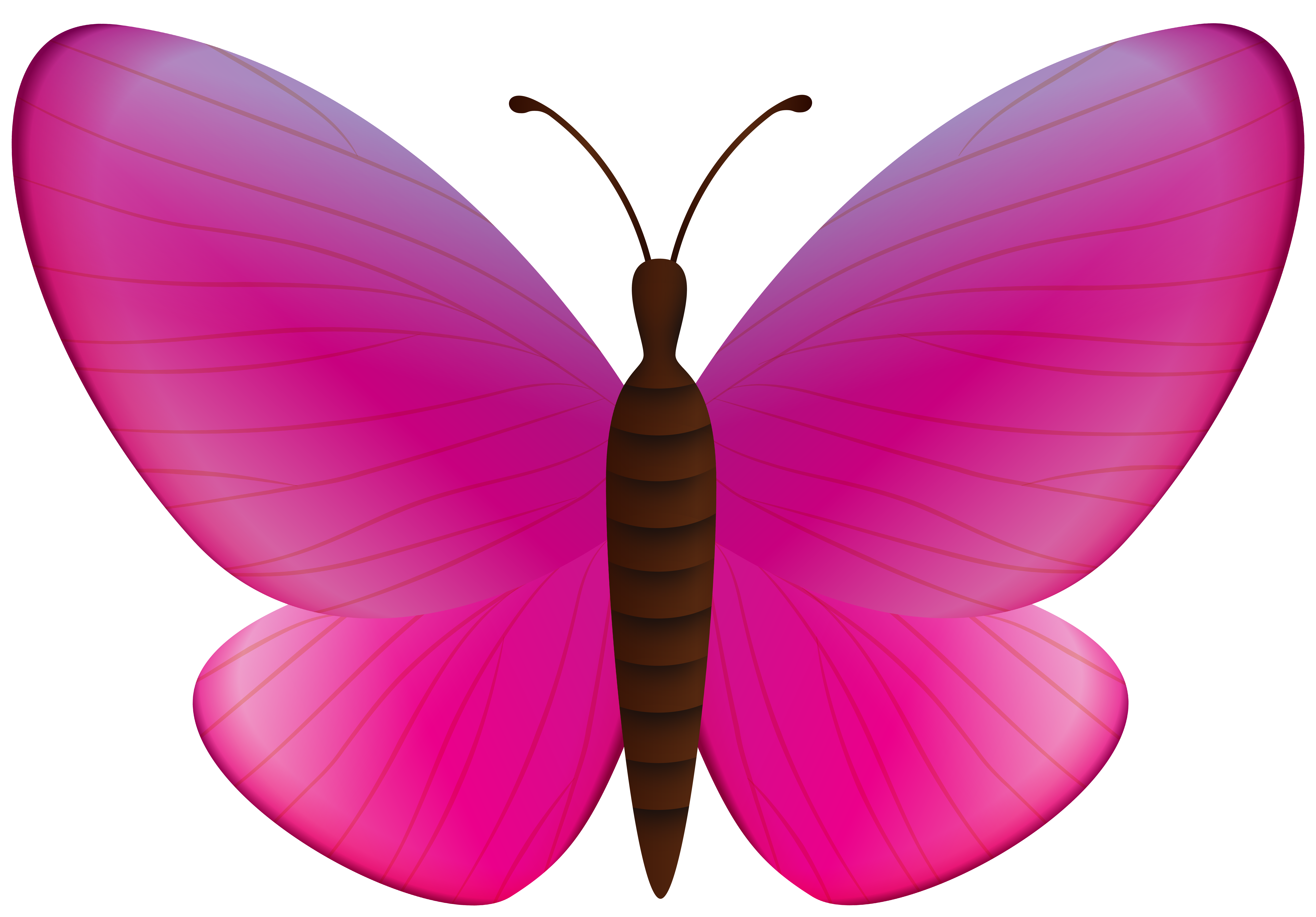 Pink Butterfly PNG Clipart.