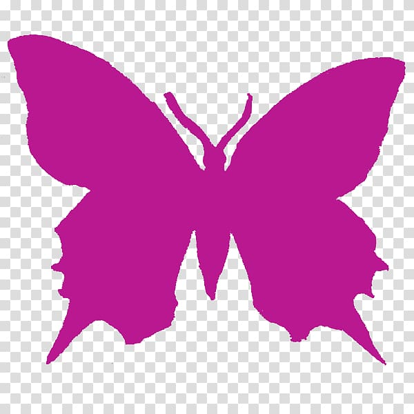 Butterfly Purple , pink butterfly transparent background PNG.