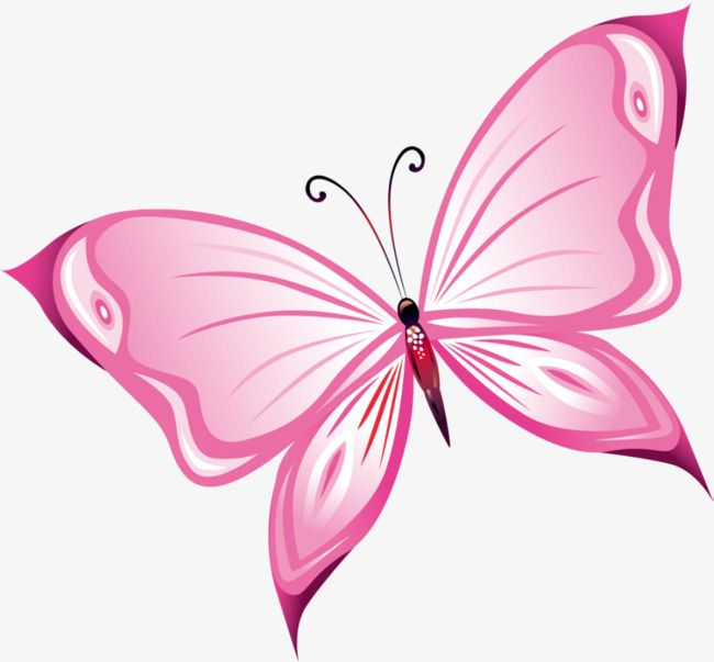Hand Painted Pink Butterfly, Butterfly Clipart, Hand.