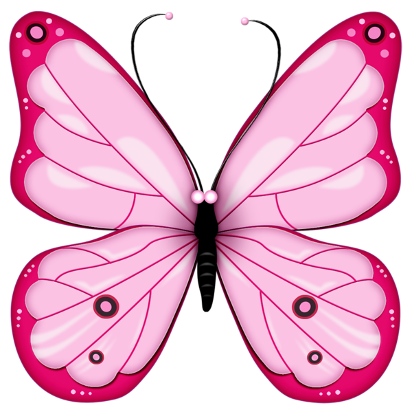 Pink Transparent Butterfly Clipart.