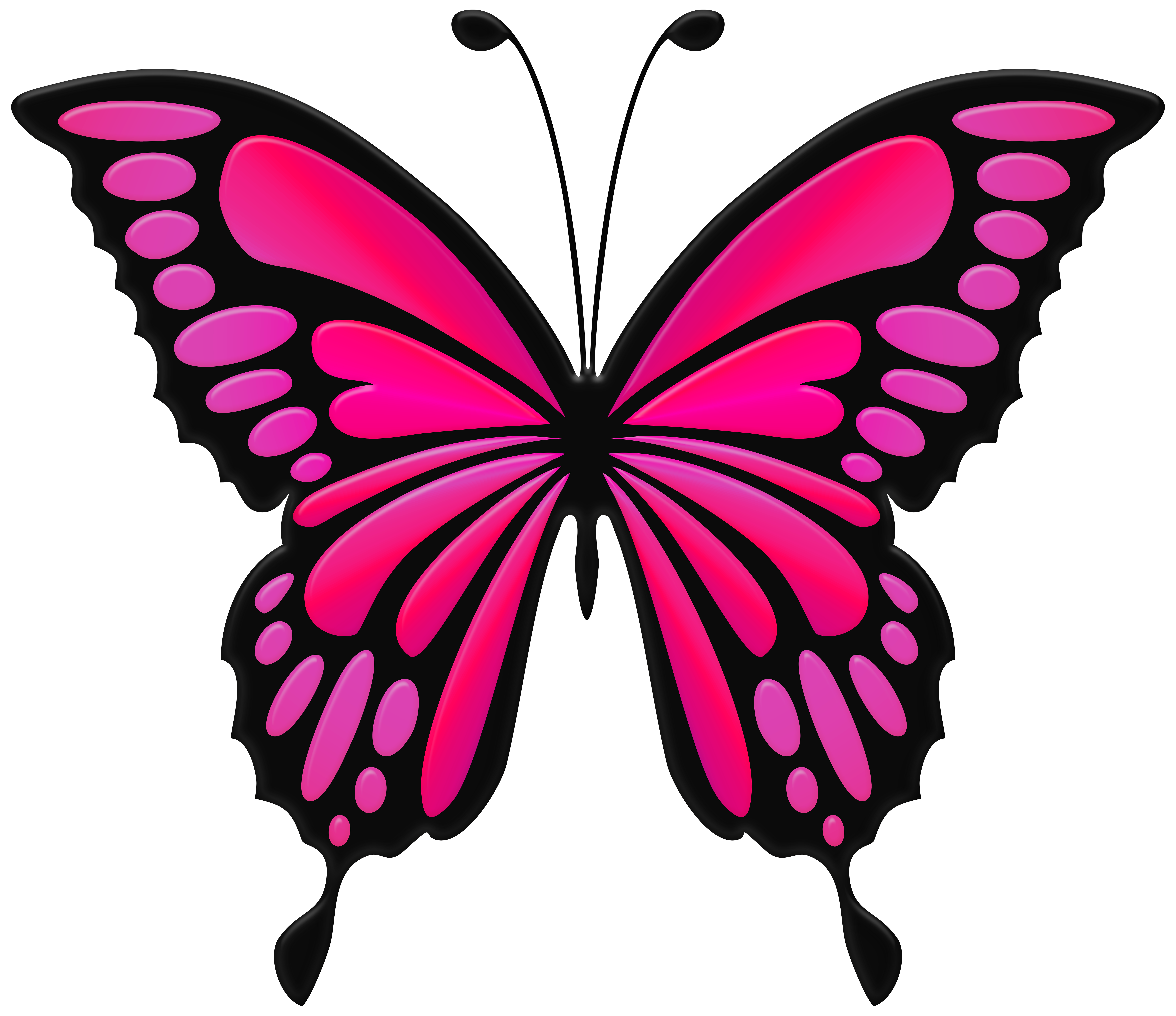 Pink Butterfly PNG Clip Art Image.