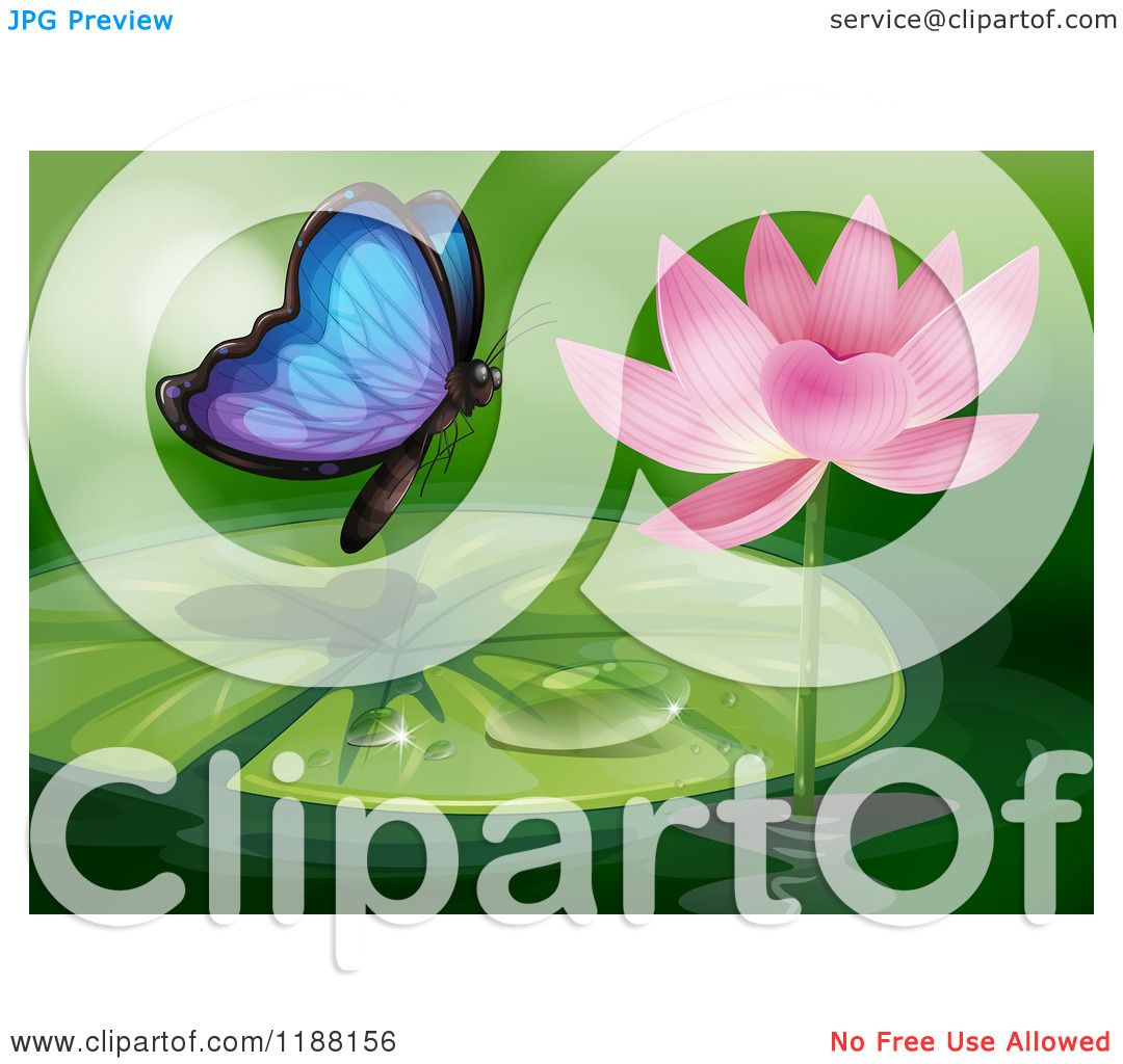 Cartoon of a Blue Butterfly Approaching a Pink Water Lily.