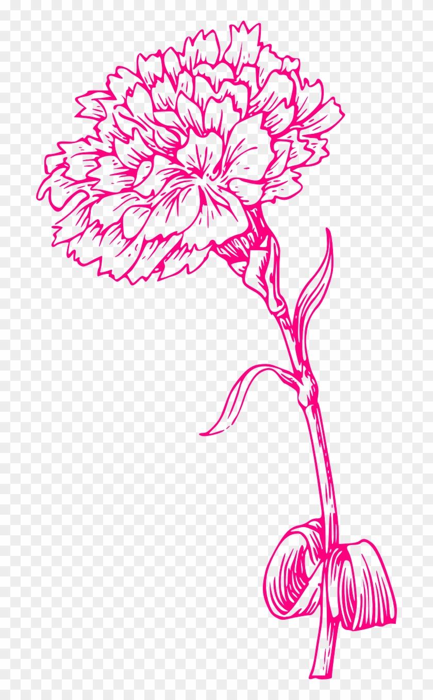 Flower Print Pink Carnation Png Image.