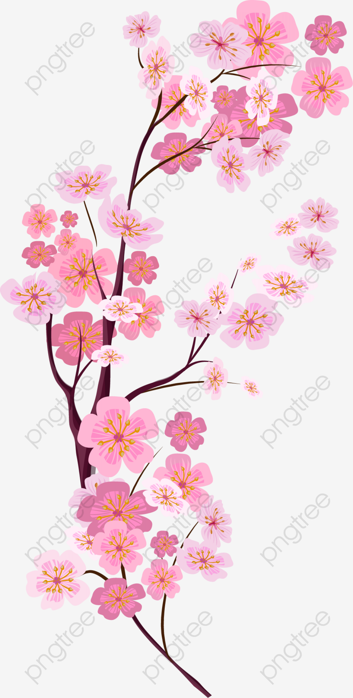 Vector Painted Pink Cherry Blossoms, Vector, Hand Painted.