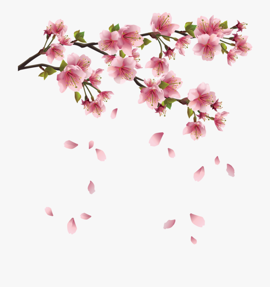 Beautiful Pink Spring Branch With Falling Petals Png.