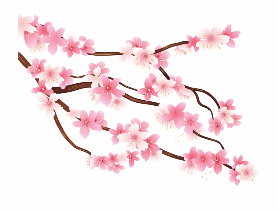 Pink Spring Branch Png Clipart Image.
