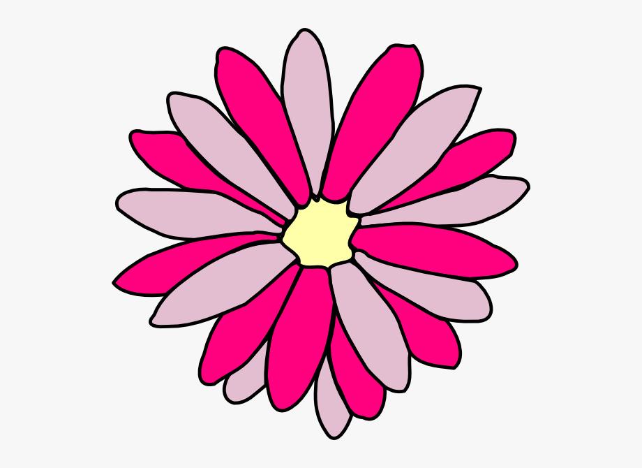 Pink Daisy Clipart.