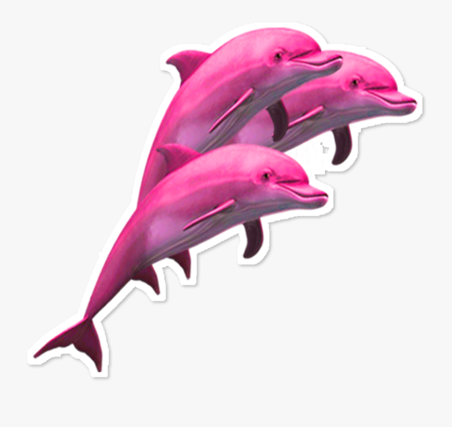 ftestickers #scdolphin #dolphins #clipart #pink #aesthetic.