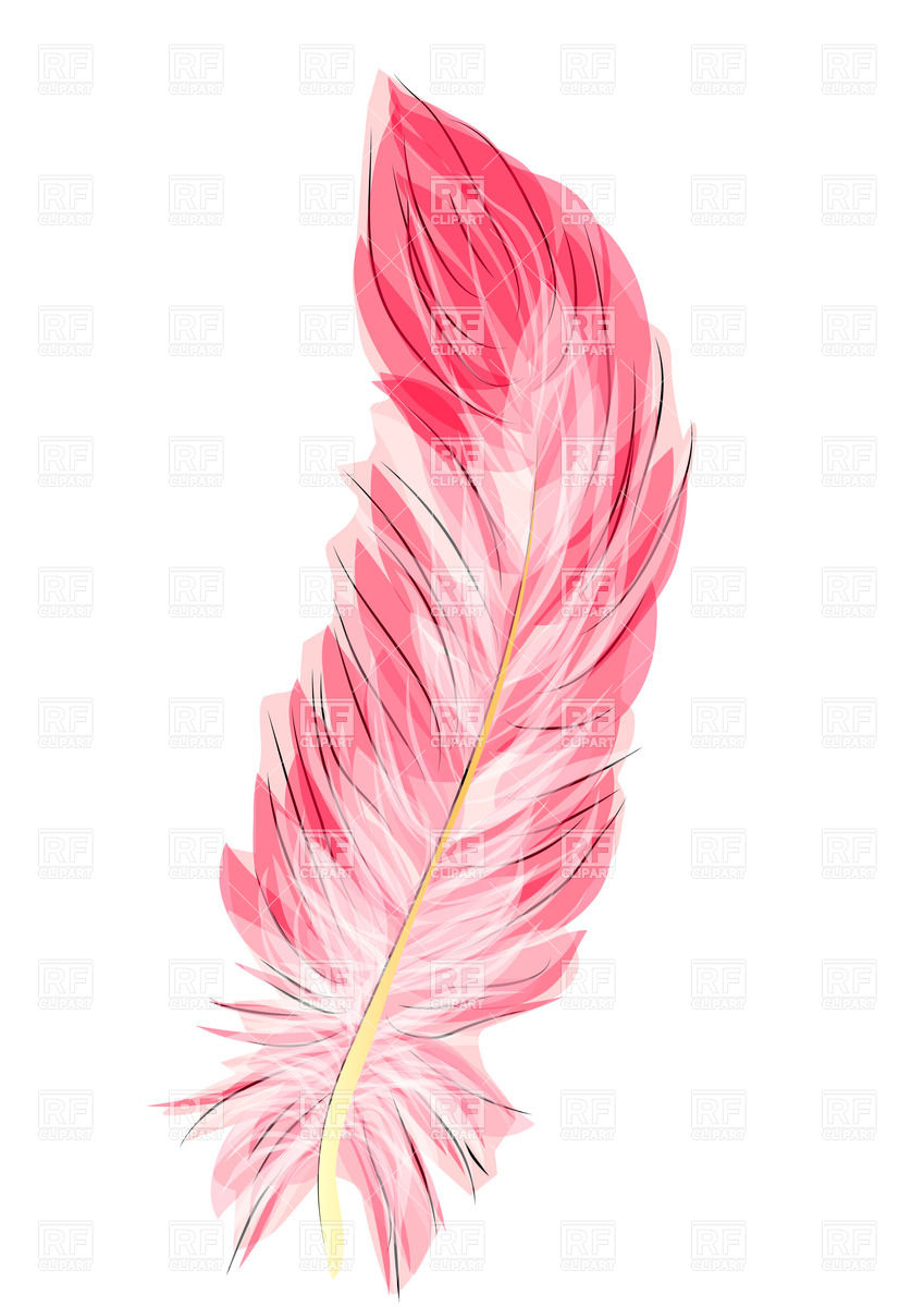 pink feathers clipart clipground