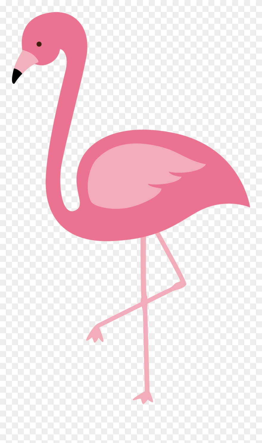 Flamingo Clipart Pink Flamingo.