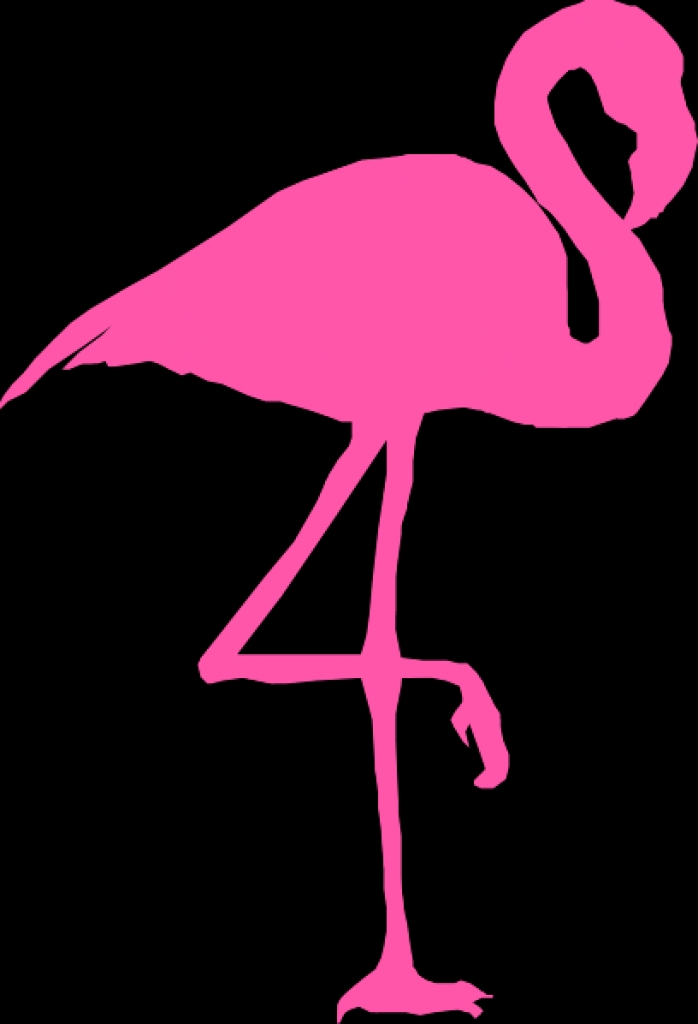 Pink flamingos clipart - Clipground - photo#19