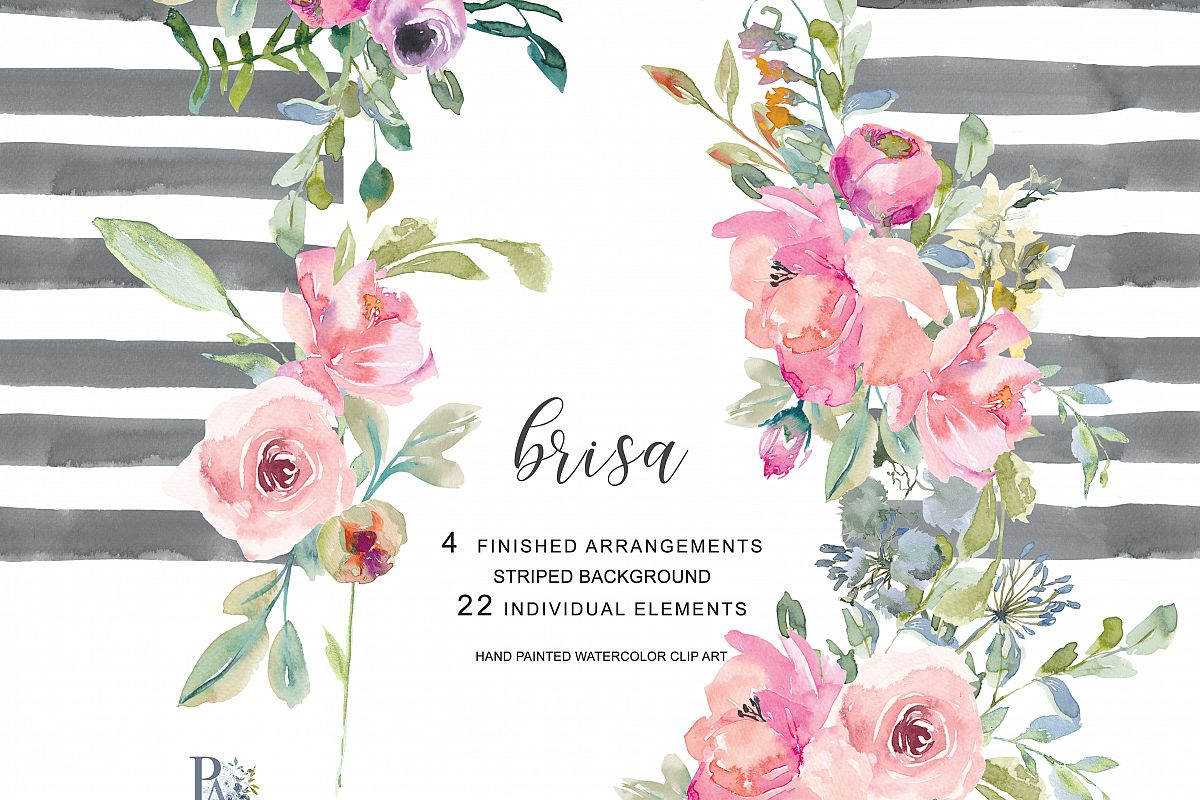 Hand Painted Watercolor Blush Pink Flowers Clipart.