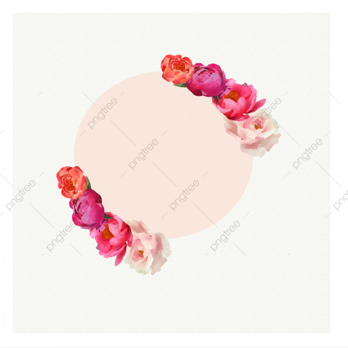 Flower Circle Frame, Peony, Spring, Transparent PNG and.