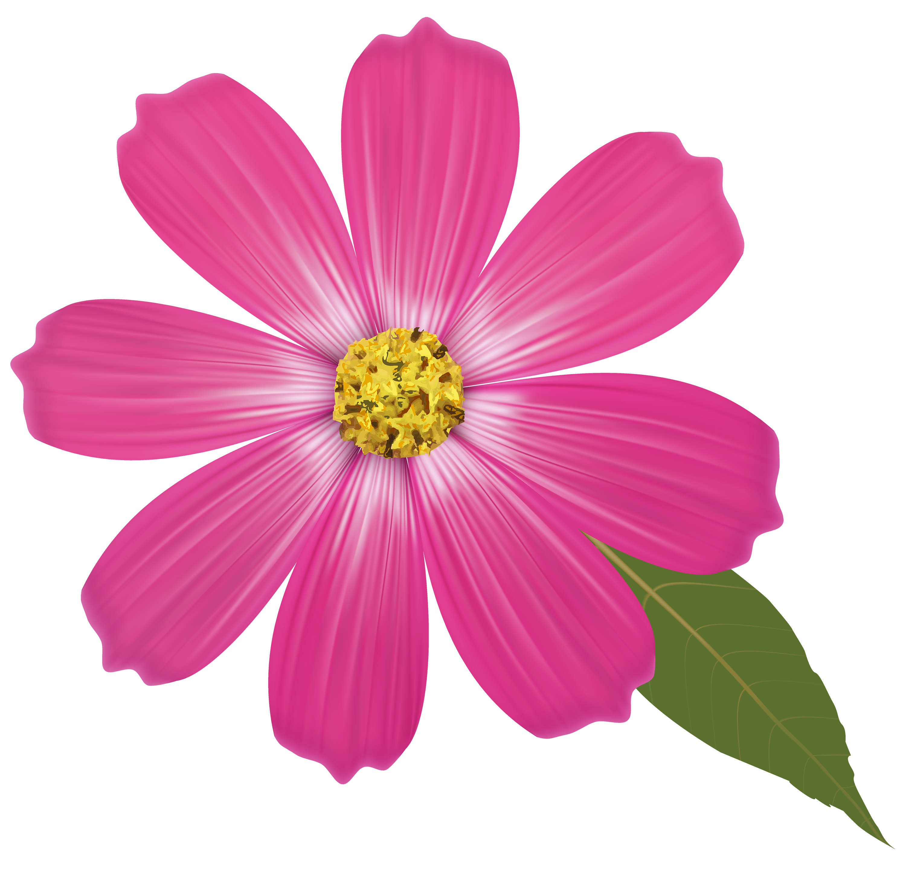 Pink Flower PNG Clipart.
