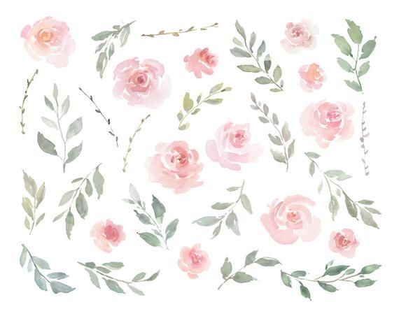 Pink Watercolor Floral Clipart Free Commercial Use Blush.
