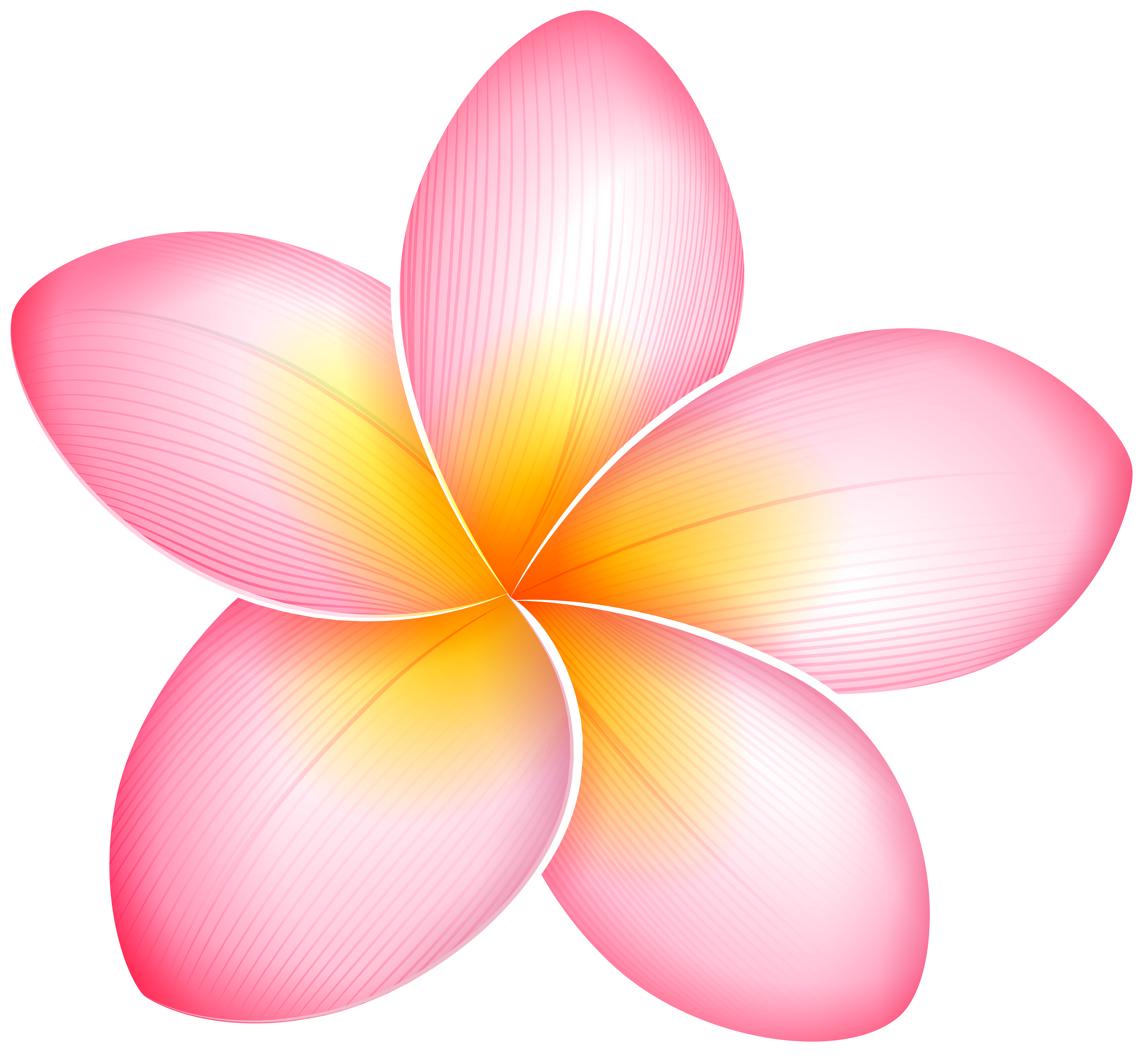 Pink Exotic Flower PNG Clip Art.