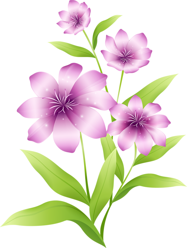 Large_Light_Pink_Flowers_Clipart.png?m=1366495200.