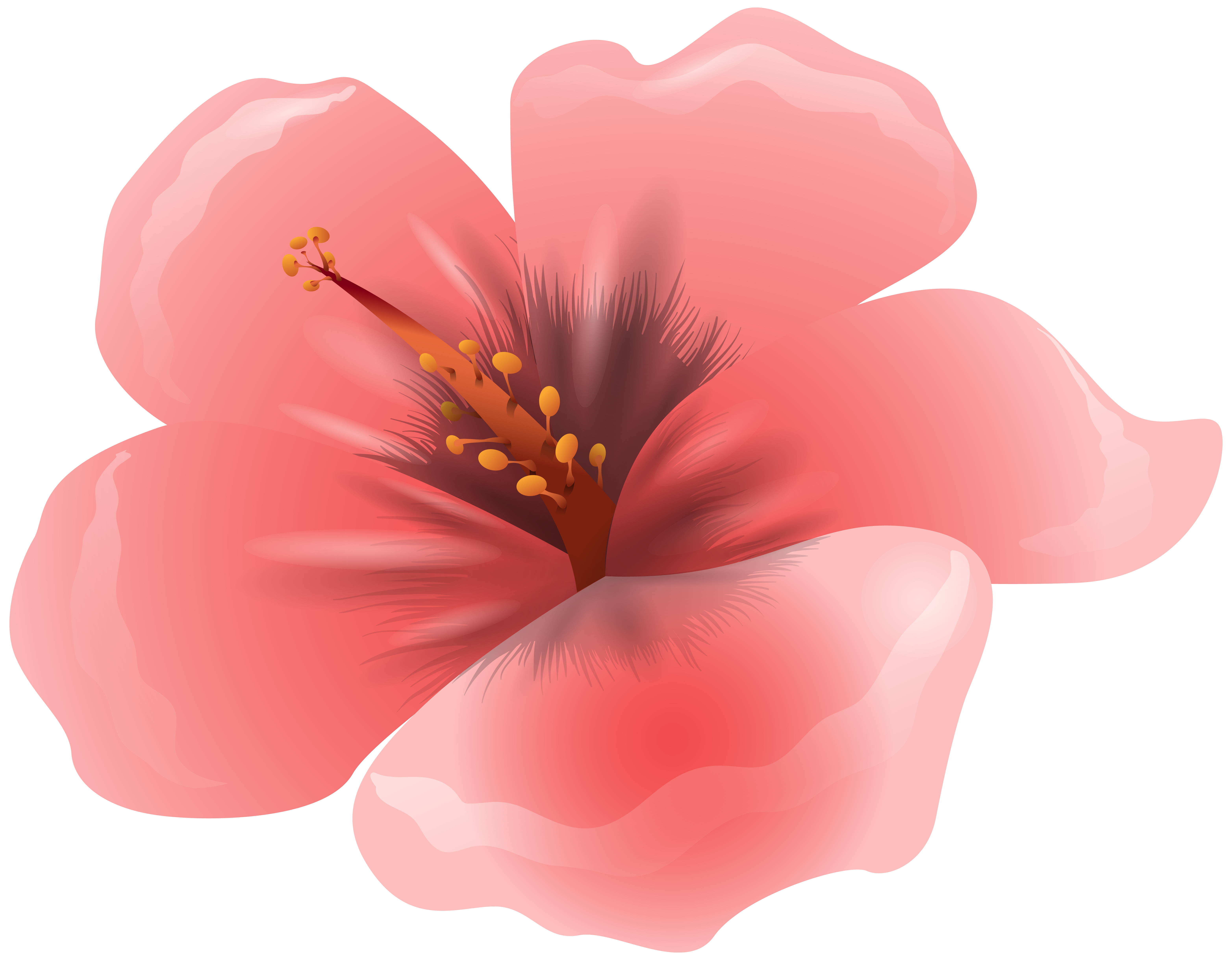 Large Pink Flower Clipart PNG Image.