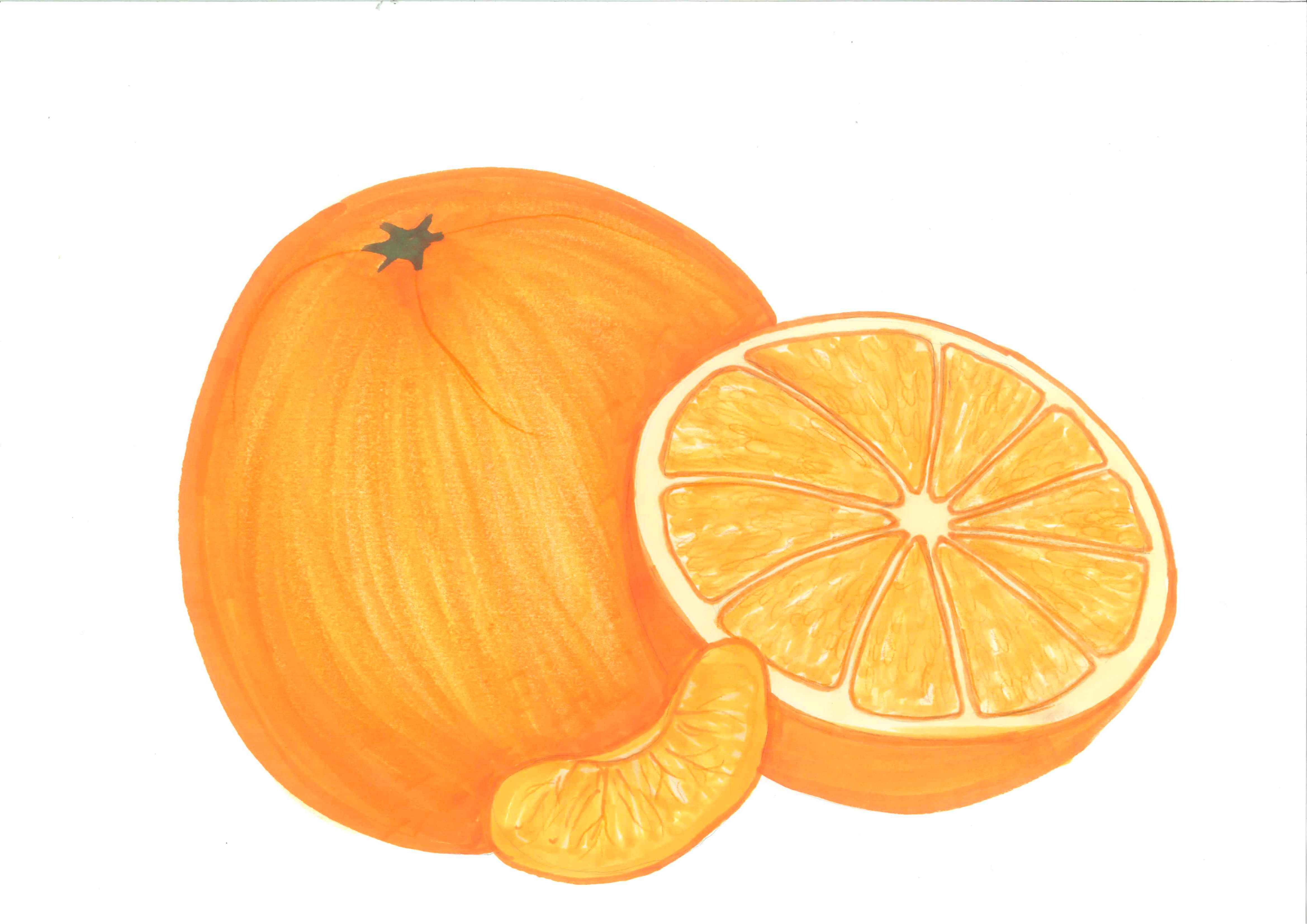 Best Orange Clipart #13385.