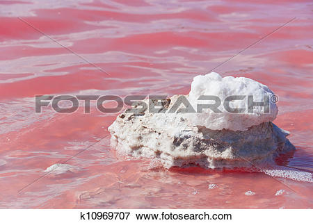 Picture of Strange colored Water at Pink Lake, Western Australia.