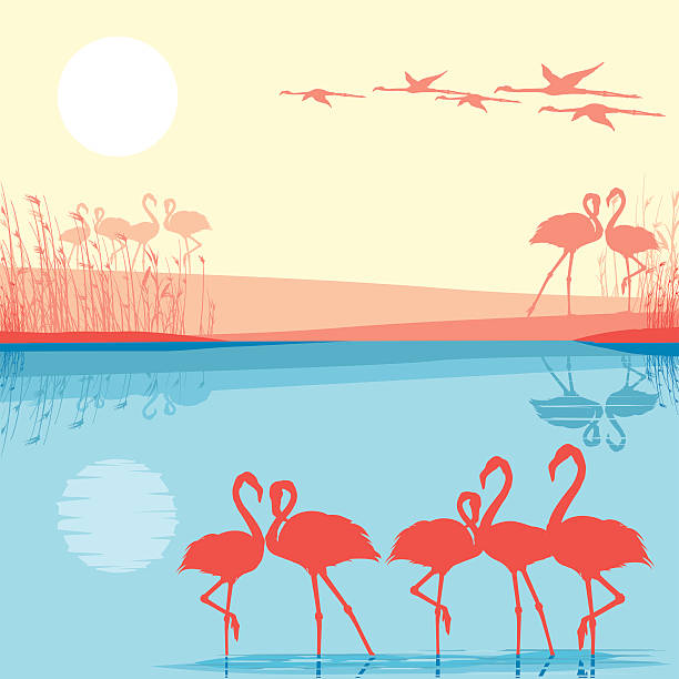 Pink Lake In Africa Clip Art, Vector Images & Illustrations.