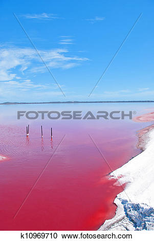 Stock Photography of Strange colored Water at Pink Lake, Western.