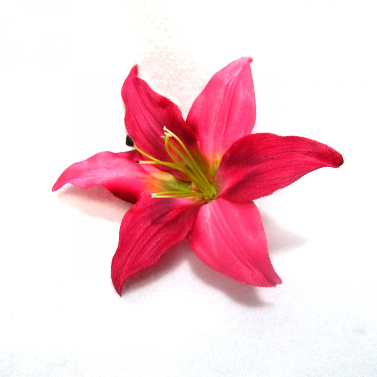 Pink Lily Clipart.