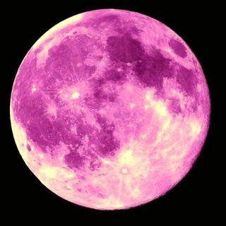 Magical pink moon: a meditation for the full moon en lunar eclipse.