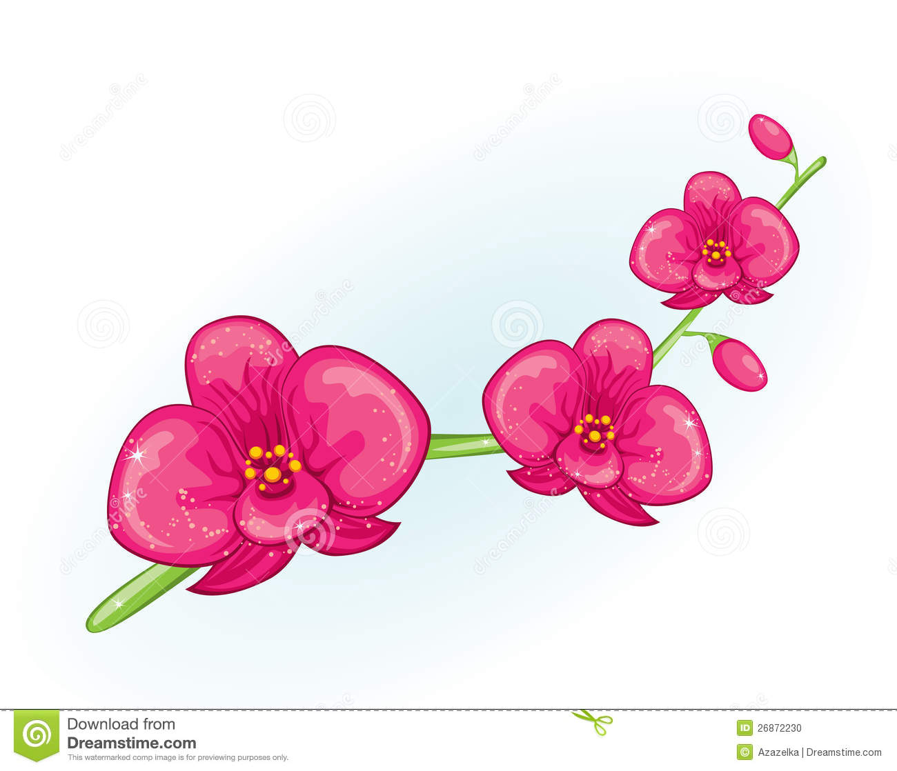 Pink Orchid Branch Stock Photo.