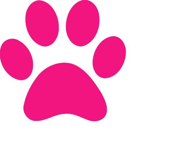Pink Paw Print Clip Art N25 free image.