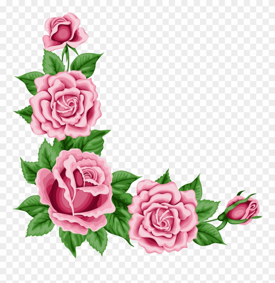 Pink Rose Clipart Flower Corner.