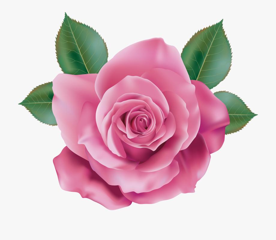 Flower Clipart, Rose Clipart, Candy Clipart, Flower.