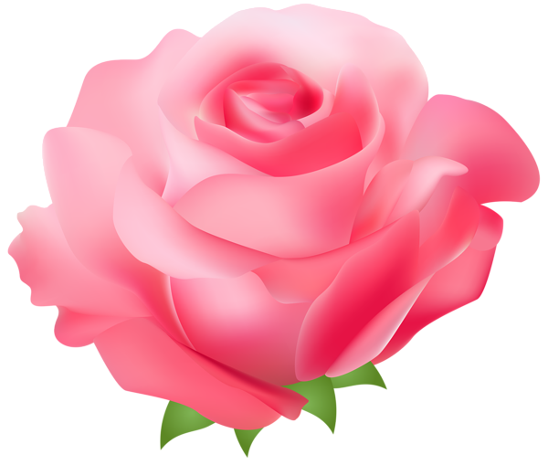rose clip art sms - photo #9