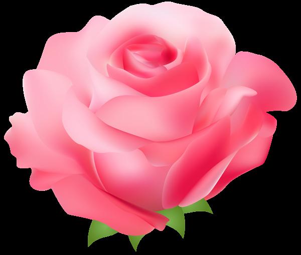 Pink Rose PNG Transparent Clip Art Image.