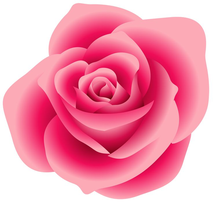 Pink Rose Clipart Free.