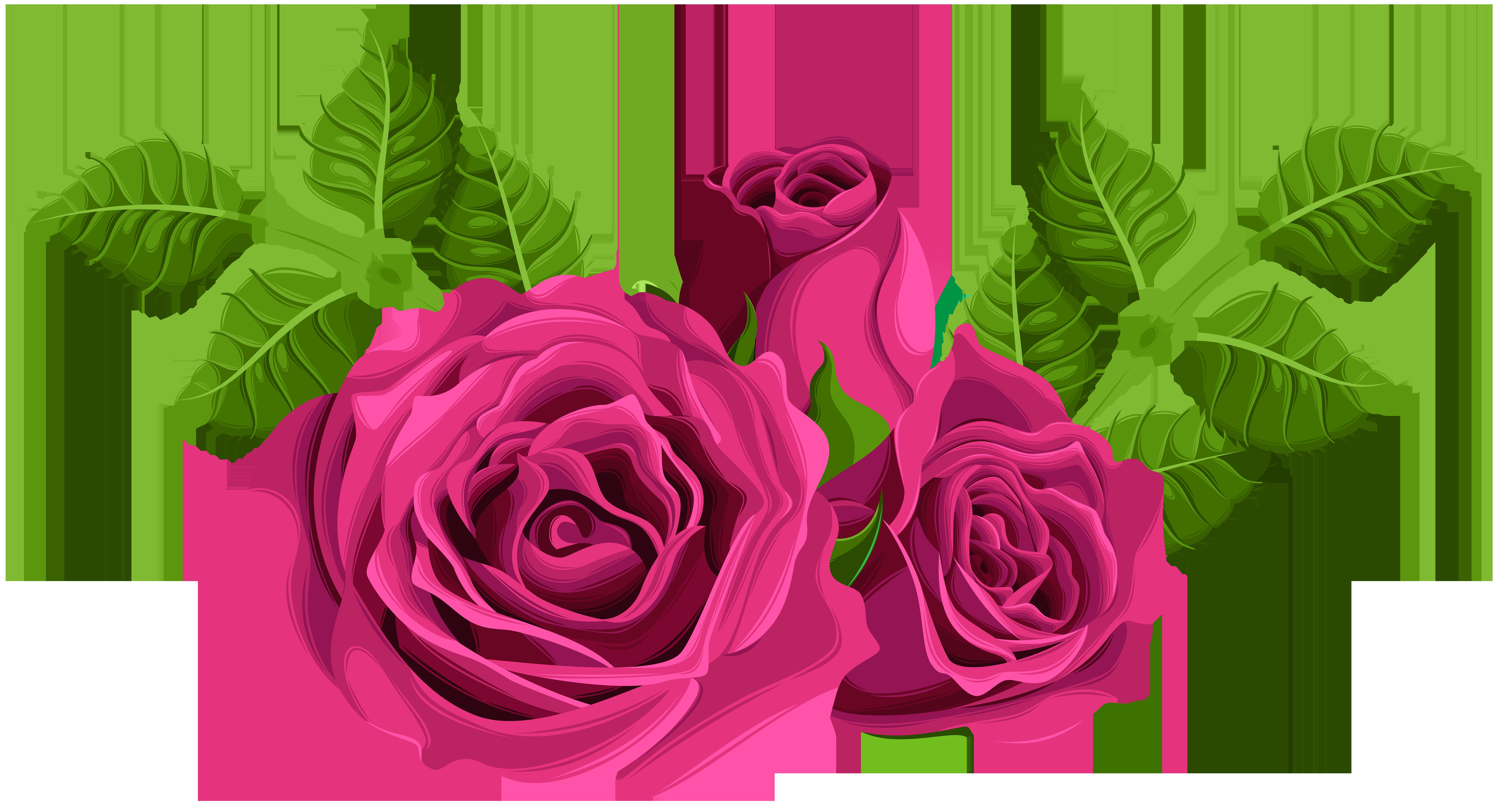 Pink Roses Decorative PNG Clip Art Image.