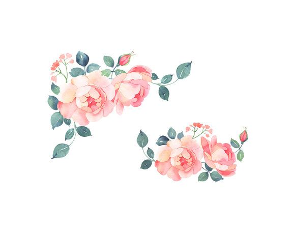 2019的Romatic roses watercolor clip art, soft pink roses.
