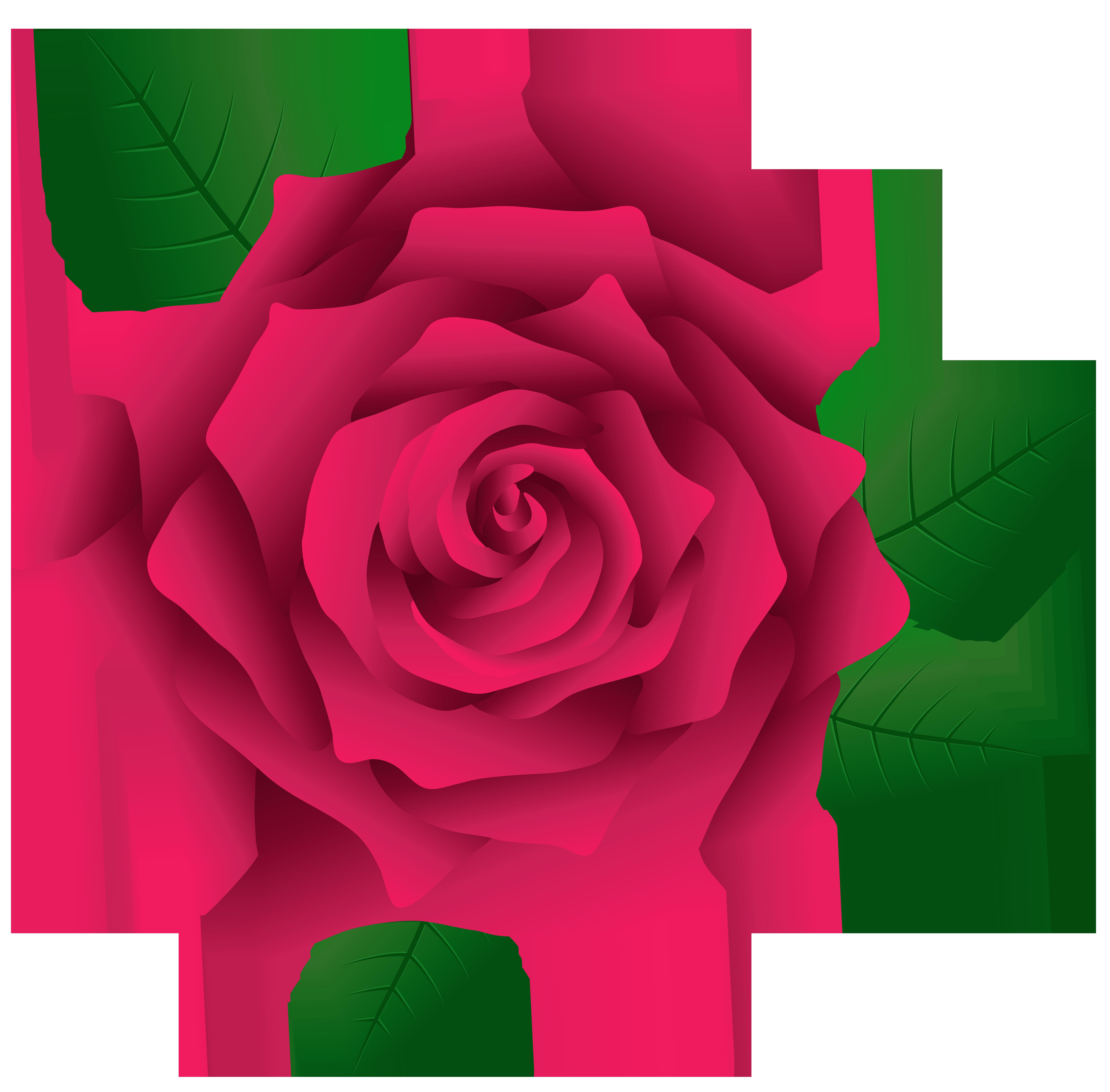 Pink Roses Clip Art.