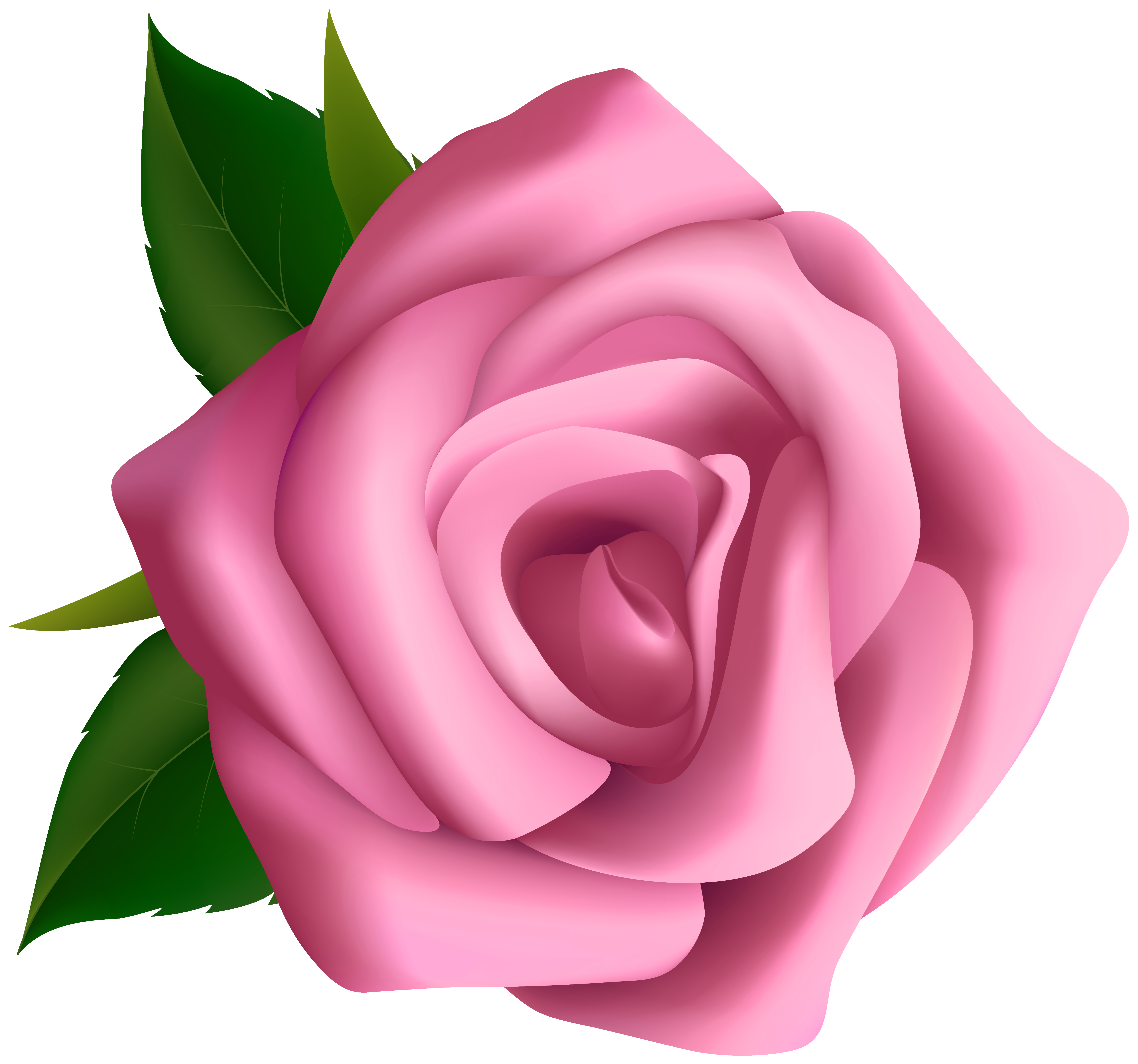Large pink rose clipart blumen pink roses clip cliparting.