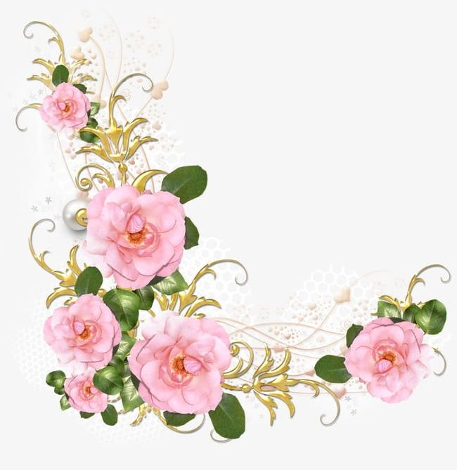 Pink Roses PNG, Clipart, Flowers, Frame, Lace, Pink, Pink.
