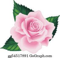 Pink Rose Clip Art.
