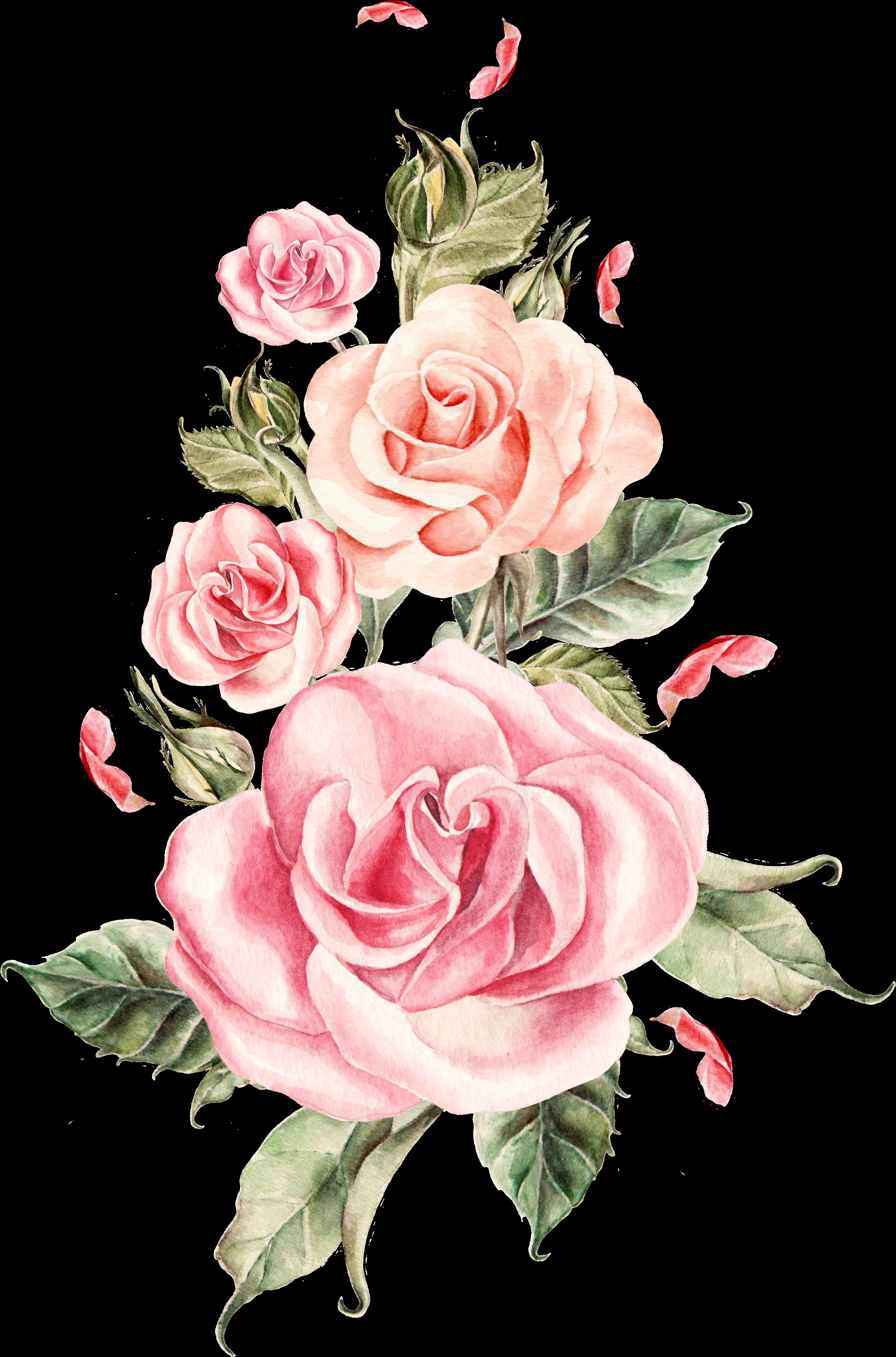 HD Pink Flower Bouquet Rose Roses Wedding Hand.