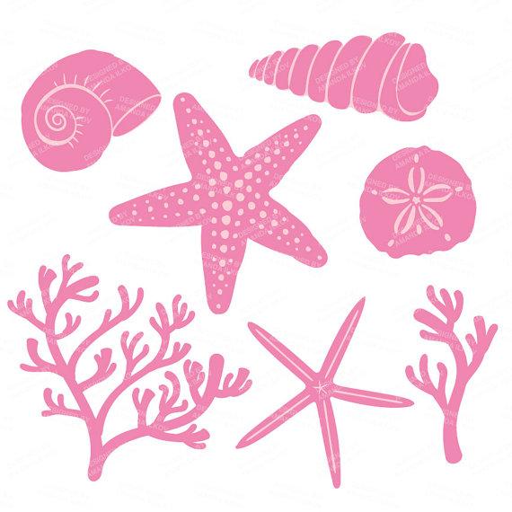 Premium Vector Seashells Clipart in Fresh Pink Seashells.