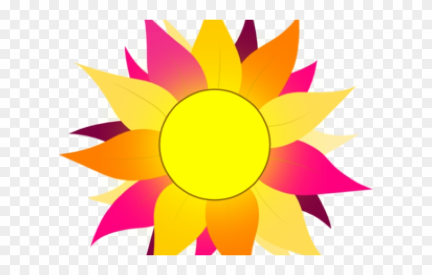 Sunflower Clipart Colorful.