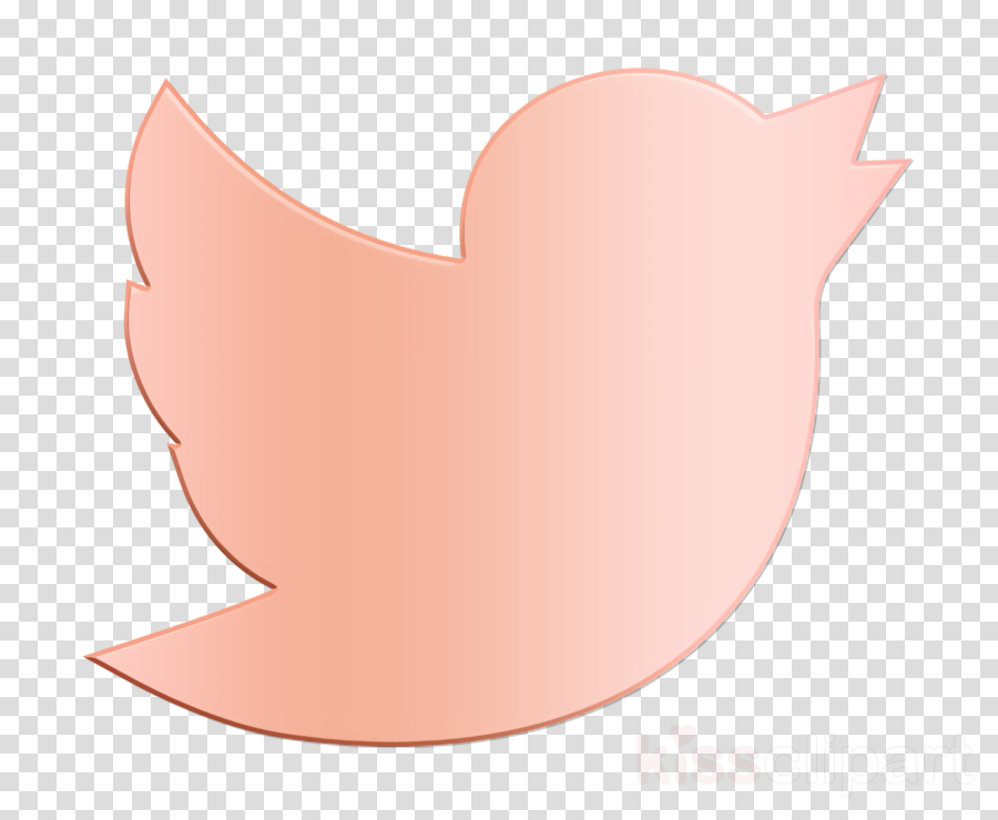 Twitter icon Social Media icon clipart.