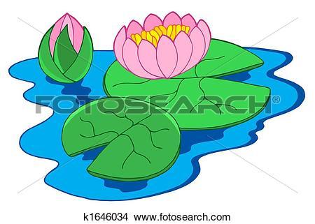 Drawings of Pink water lilies k1646034.