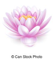 Water lily Illustrations and Stock Art. 2,814 Water lily.