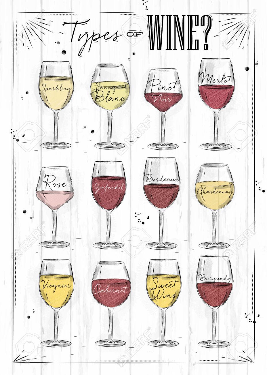 Poster Main Types Of Wine Sparkling, Sauvignon Blanc, Pinot Noir.