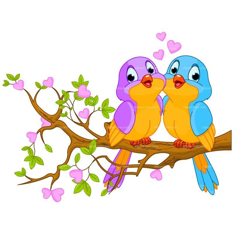 Cartoon birds vector.